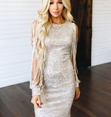 Silver Sequin slit arm Holiday Dress