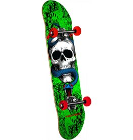 Powell Peralta Powell Peralta Skull and Snake (7.75)