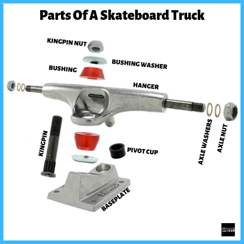 Parts Of A Skateboard Truck - Hanger, Kingpin, Pivot Cut, bushings, axle nuts, baseplate