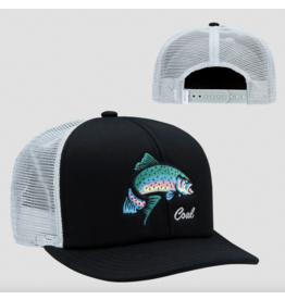 Coal Coal Wilds Rainbow hat Black