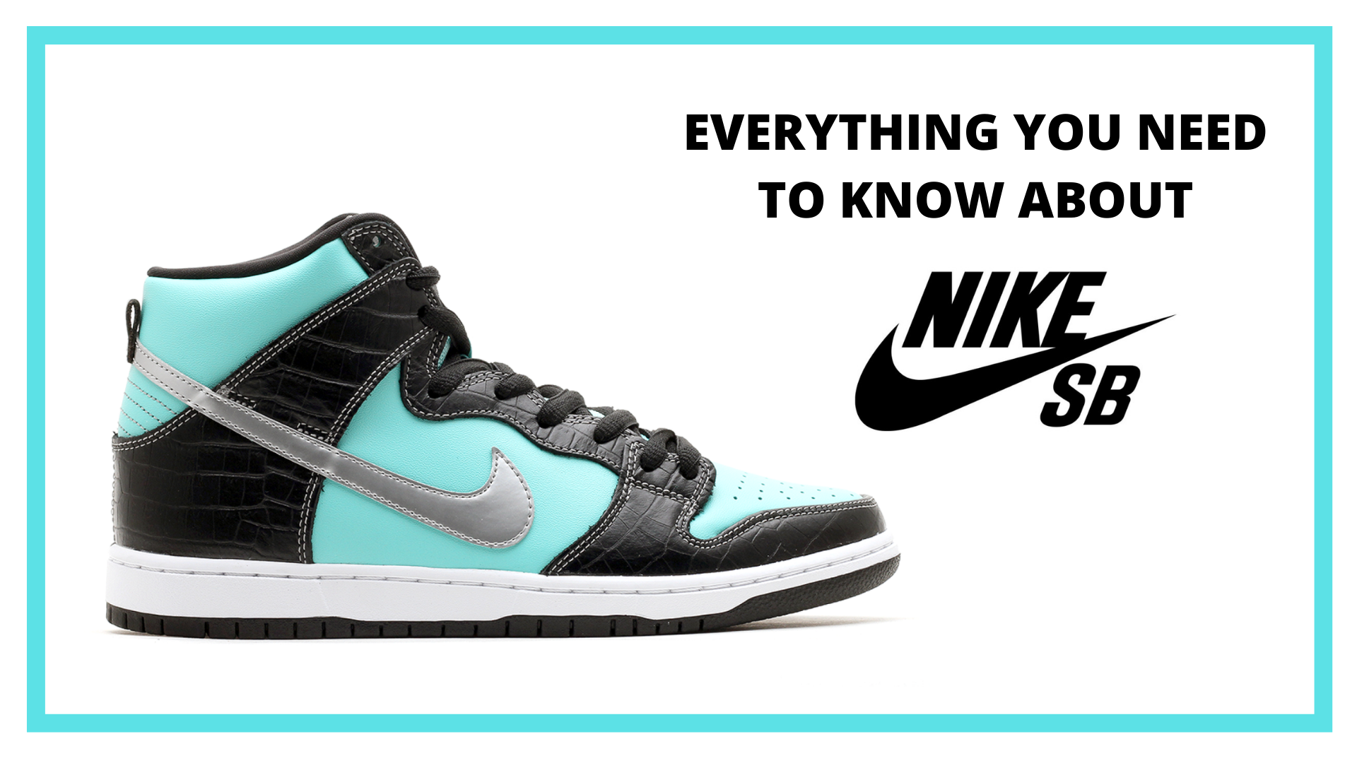History Of Nike SB
