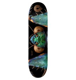 Powell Peralta Powell Peralta Bark Mantis Deck (8.75)