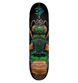 Powell Peralta Powell Peralta Ruby Tailed Wasp Flight Deck (8.5)