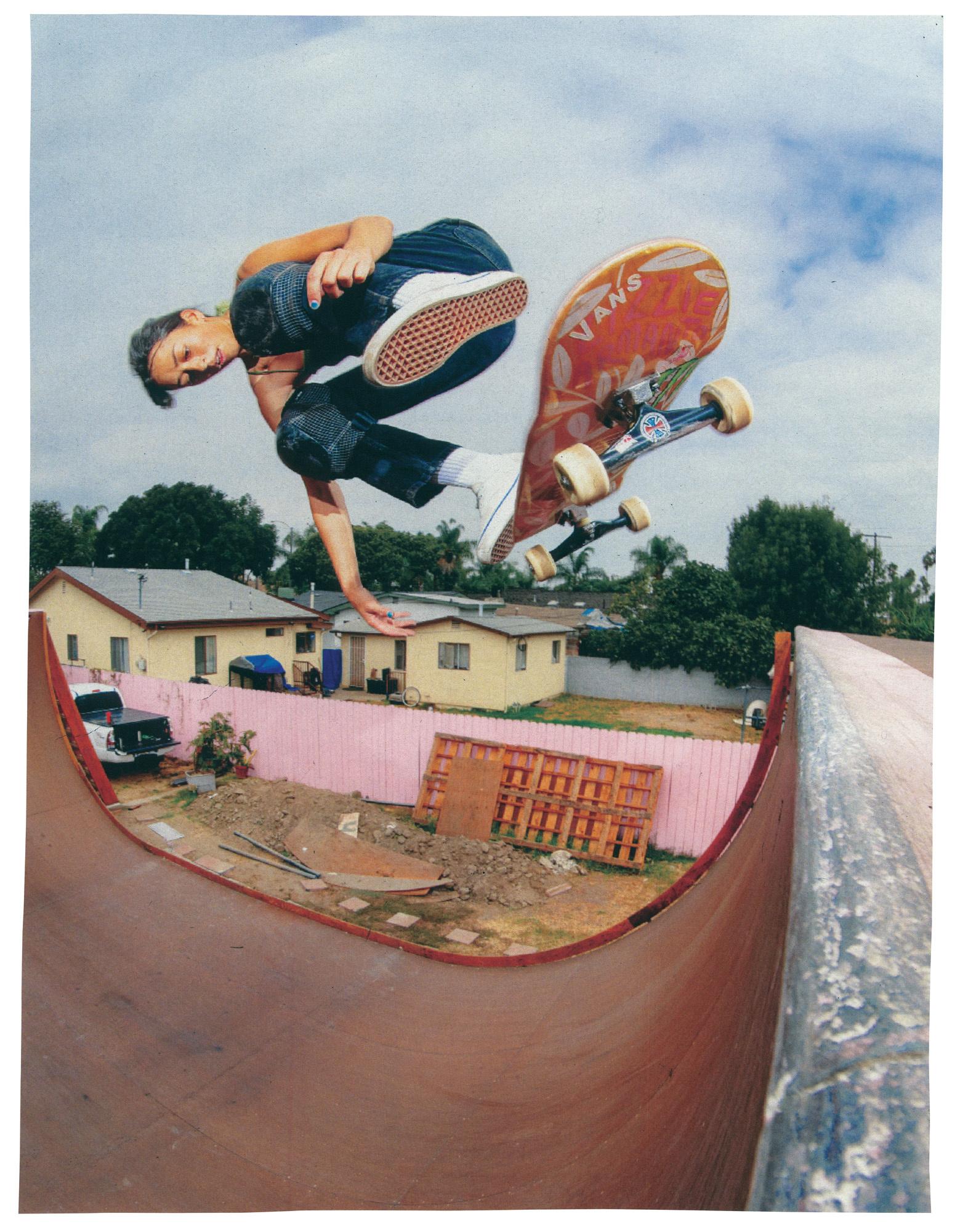 Vans Skate Classics Old Skool Era Half Cabs Sk8 Hi online canada