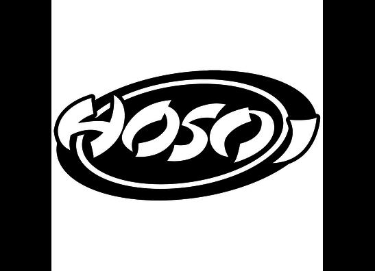 Hosoi Skateboards