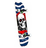 Powell Peralta Powell Peralta Ripper One Off Complete (7.75)