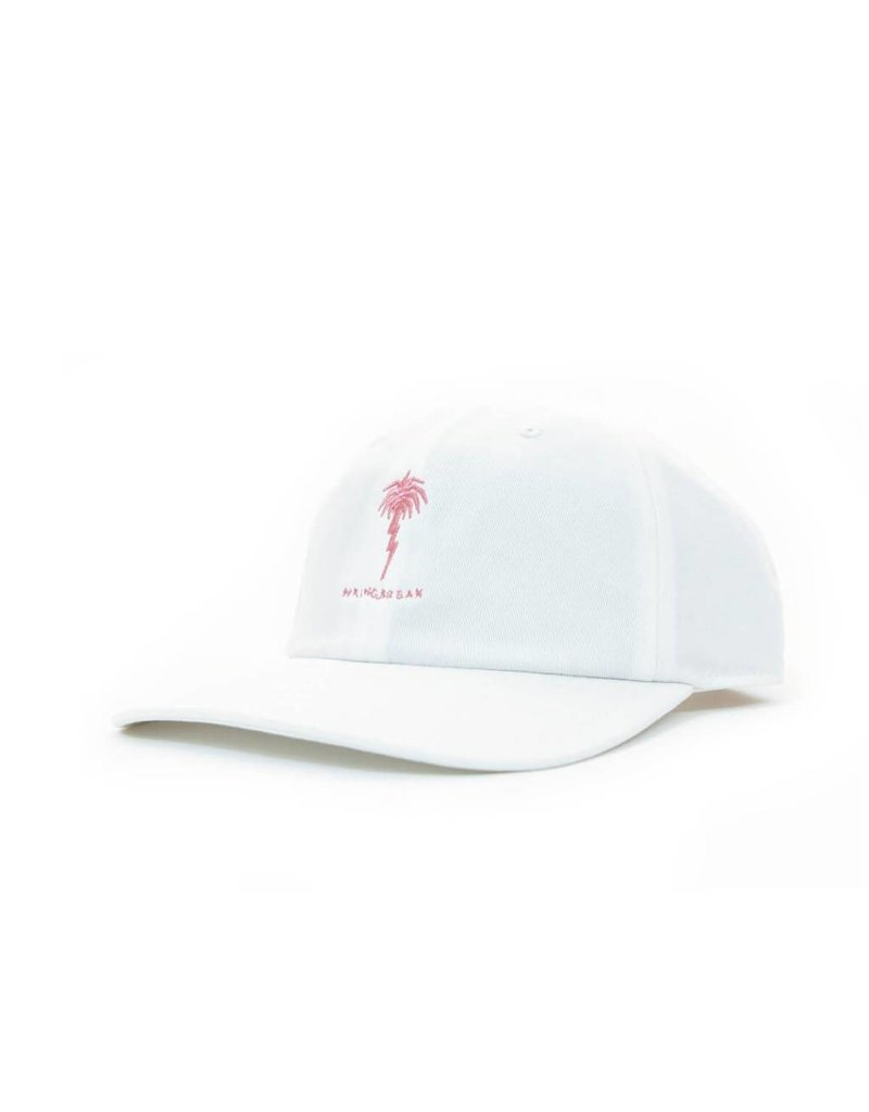 Capita Capita Spring Breakers Dad Cap