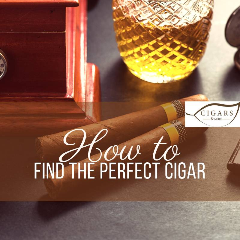How to find the perfect cigar