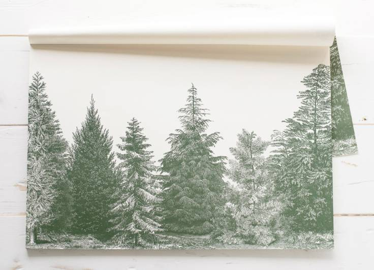 The Birch Store Paper Placemats