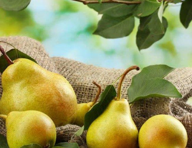 Sous les oliviers Balsamique poire 500 ml