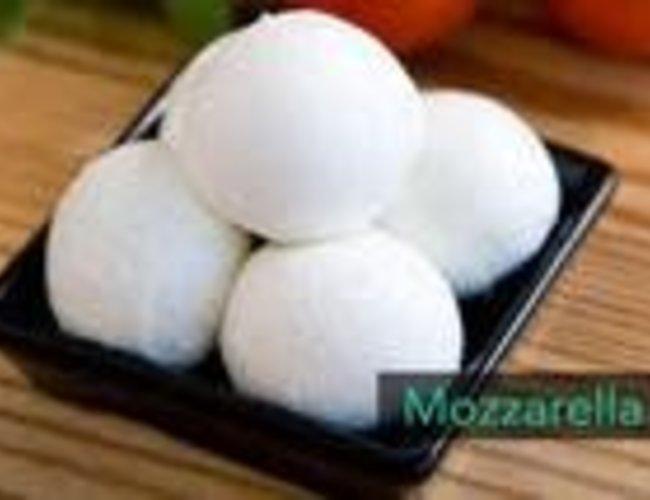 Mini kits de fromage artisanal maison frais