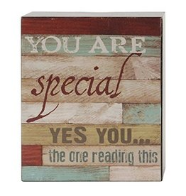 YOU ARE SPECIAL Wall Box Sign