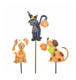 Round Top Collection Trick or Treat pets- Witch Cat