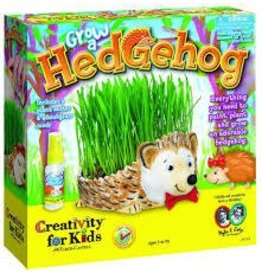 Creativity for Kids Grow a Hedgehog Kit