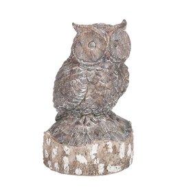 Owl Resin