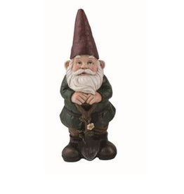 Transpac Gnome-Green