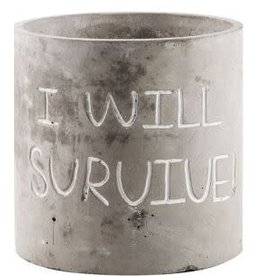"Home Essentials Cement Planter- "" Survive"""