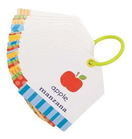 C R Gibson Ring Flash Cards - Objects