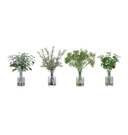 Ceci Kitchen Herbs