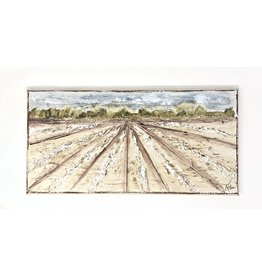 8x16 Cotton Field