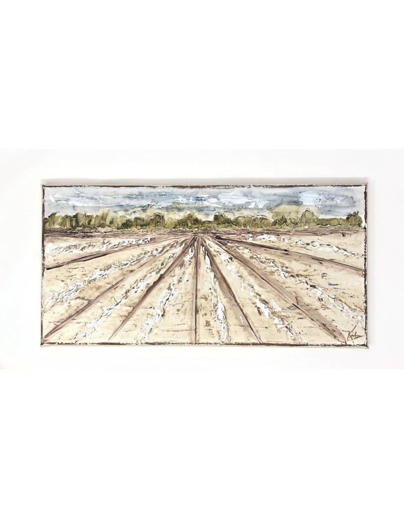 8x16 Cotton Field