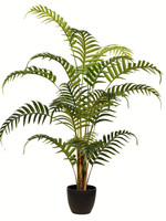 """35"""" Potted Fern Palm"""