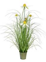 "Green Daisy Grass in Iron Pot 24"""