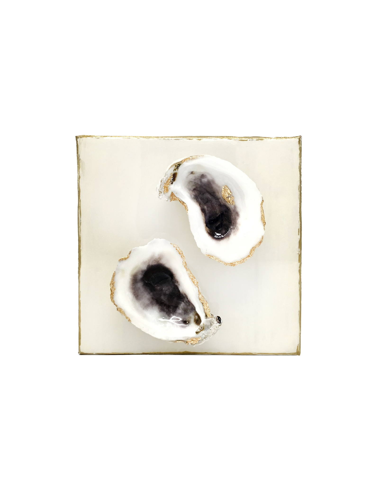 6x6 Oyster