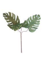 Palm Fronds Botanica 790