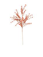 Botanica 977 Red Flowers