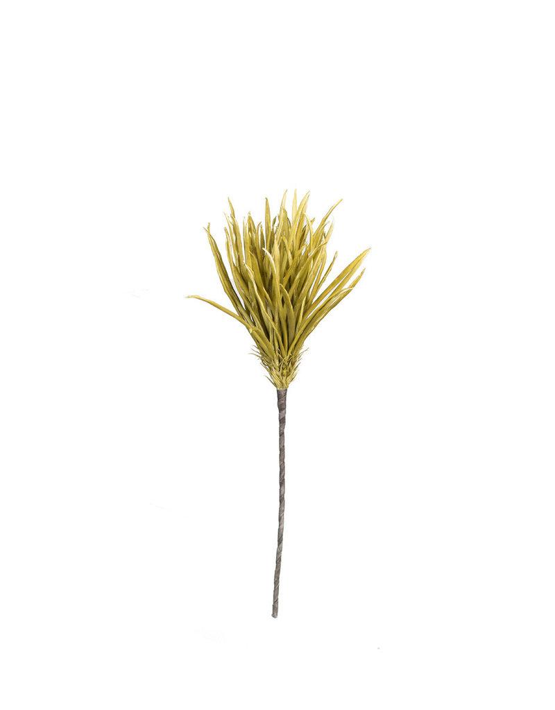 Layered Grass Stems