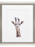 Baby Animal Artwork