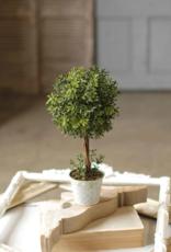 "New England Boxwood Topiary 15"""