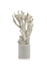Coral on White Marble Base
