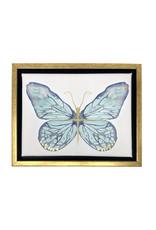 MKD Butterfly 11x14
