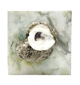 """Oyster Box 5x5"""""""