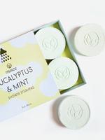 Eucalyptus & Mint Shower Steamers