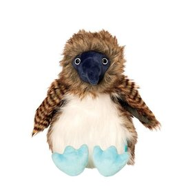 BENNY THE BLUE FOOTED BOOBY