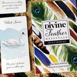 DIVINE FEATHER MESSENGER CARDS