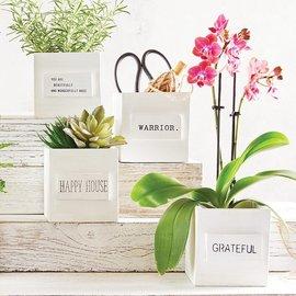 GRATEFUL - NEST BOX