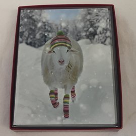 HOLIDAY Card Wooly Ewe Boxed Set/12