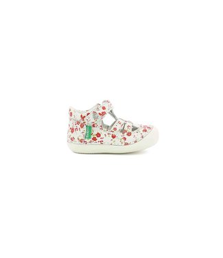 Kickers Kickers Sushy White Floral 75$-80$