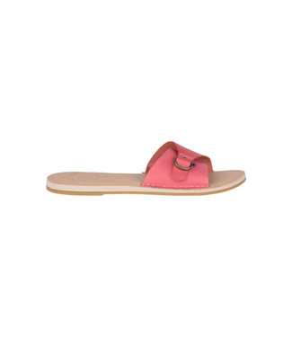 Sperry Top Sider Sperry Seaportslide Red