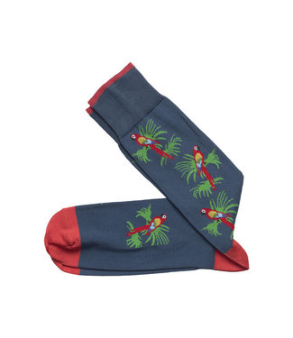 Johnston & Murphy Johnston & Murphy Socks Parrot Blue & Red