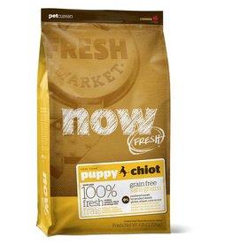 Petcurean Now Fresh Grain Free Puppy Recipe Dry Dog Food 6lb