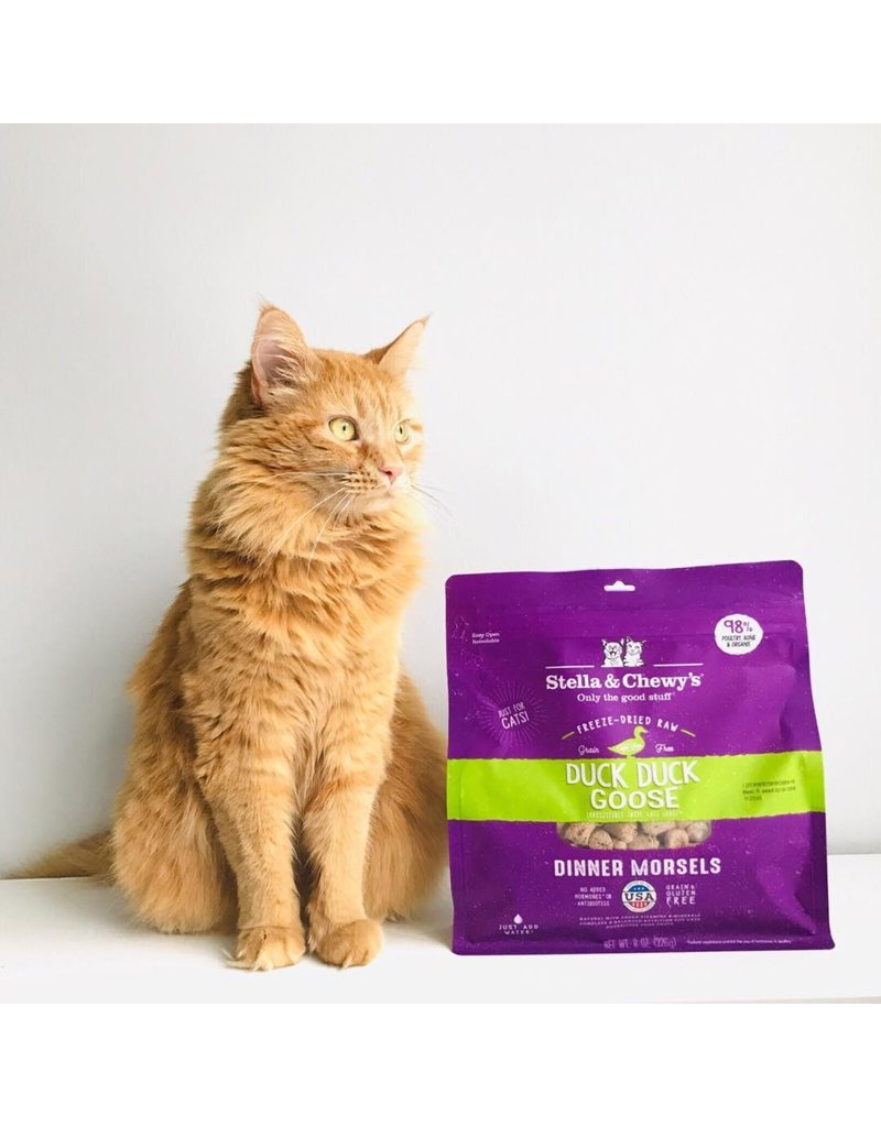 Stella & Chewy's Stella & Chewy's Freeze Dried Dinner Morsels for Cats Duck Duck Goose 3.5oz