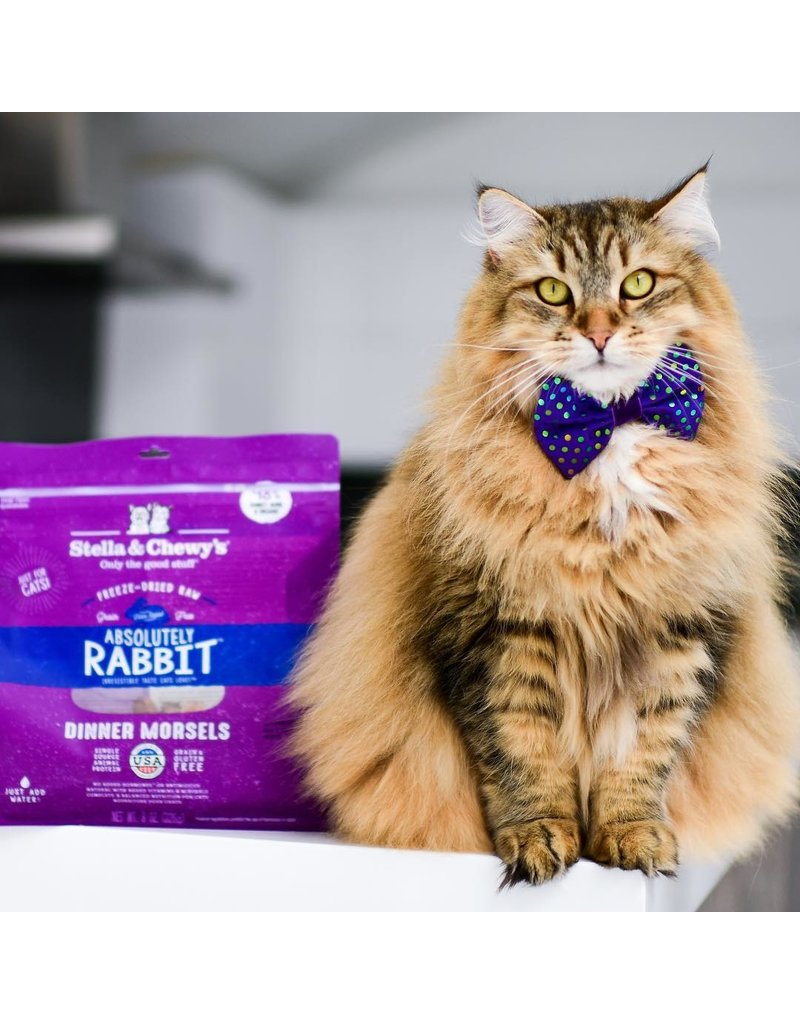 Stella & Chewy's Stella & Chewy's Absolutely Rabbit Freeze-Dried Dinner Morsels for Cats 3.5oz