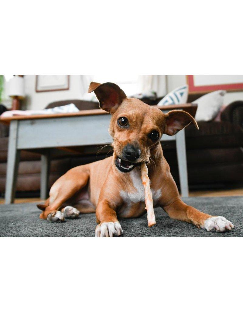 Earth Animal Earth Animal No Hide Pork Stix Dog Chews 10 pack