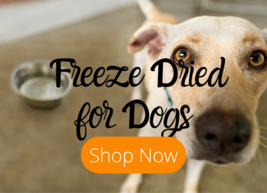 Freeze-Dried for Dogs