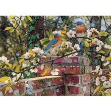 Cobble Hill Puzzles Cobble Hill Puzzle 1000pc Backyard Blues